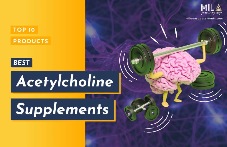 Best Acetylcholine Supplements