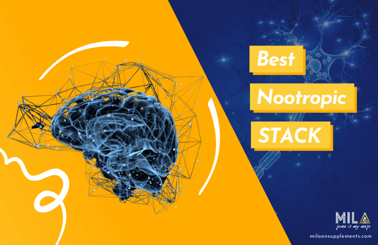 Best Nootropic Stack Supplements
