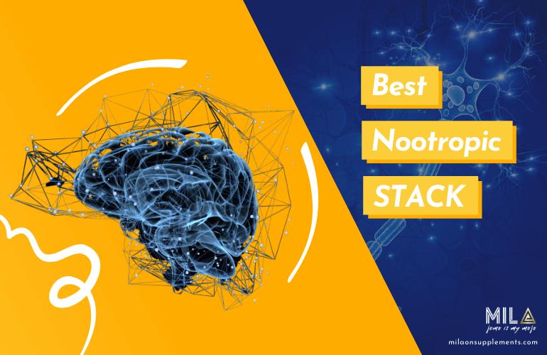 Best Nootropic Stack Supplements