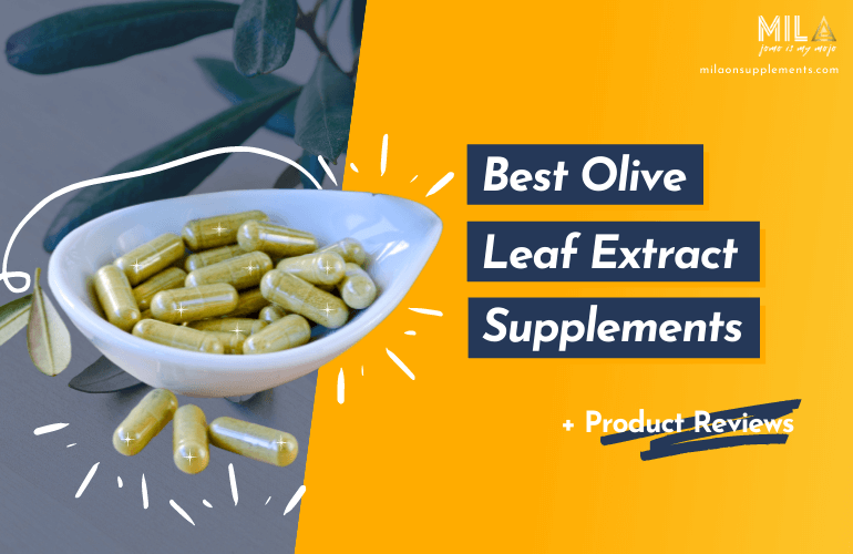 Best Olive Leaf Extract Supplements
