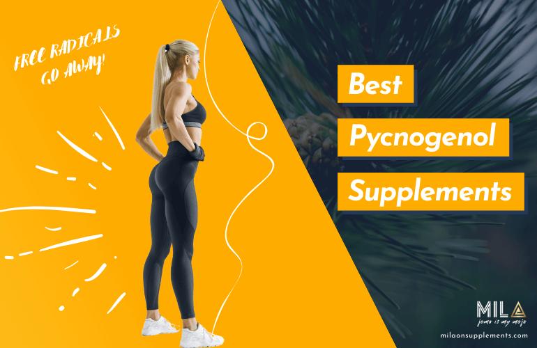 Best Pycnogenol Supplements