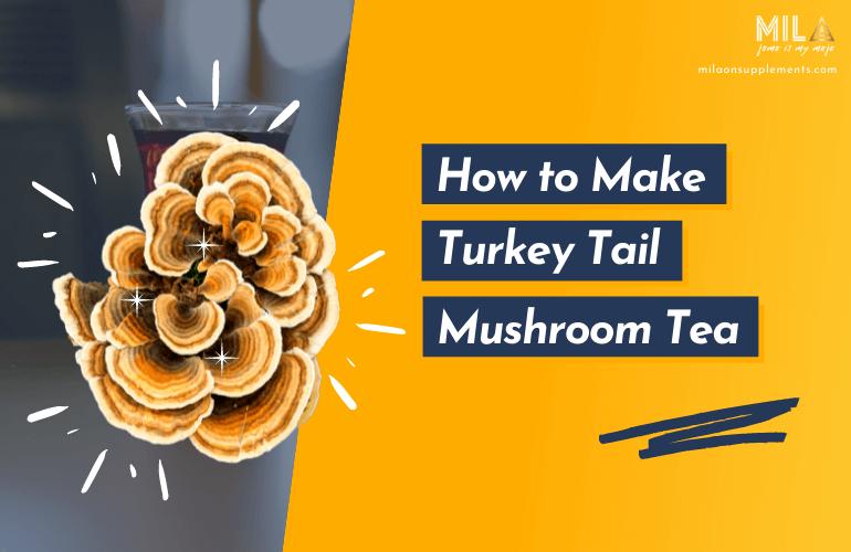 How to Make Turkey Tail Mushroom Tea